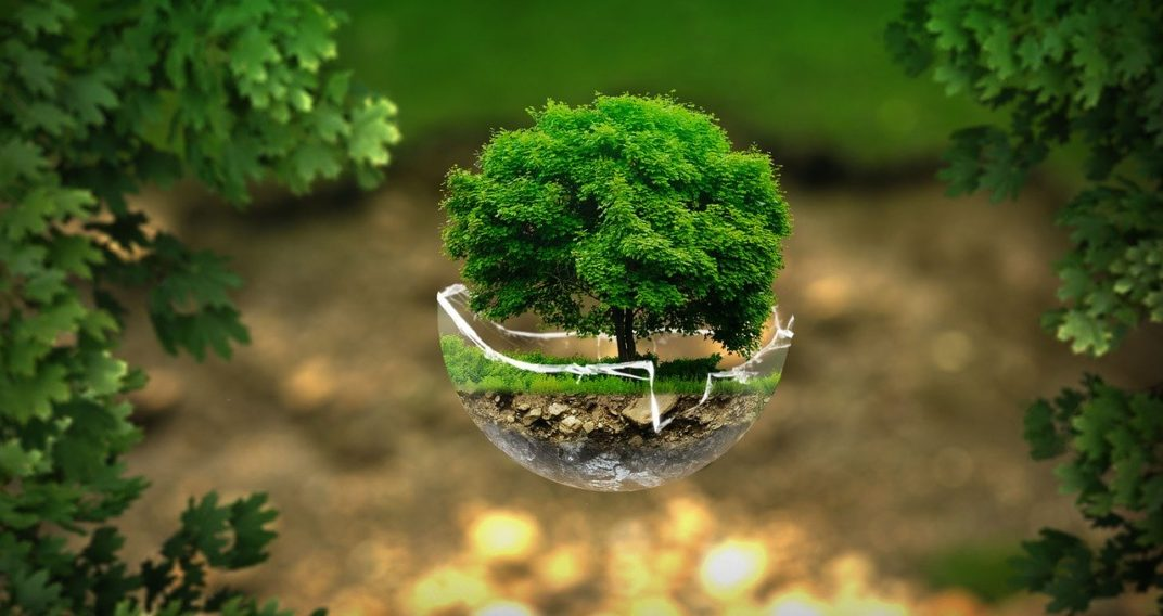 Interview ministère de la transition écologique